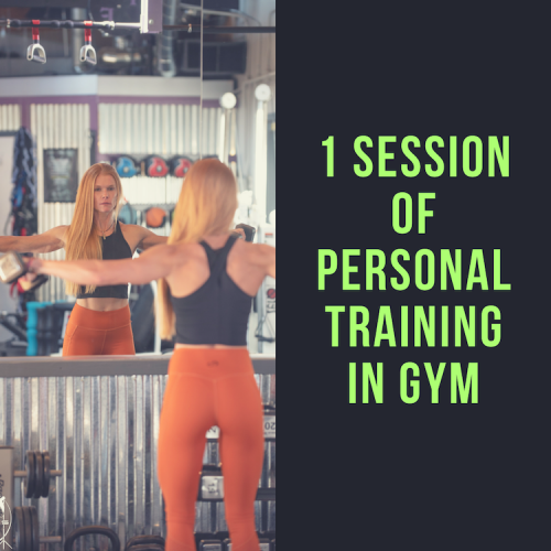1 session of personal training in gym