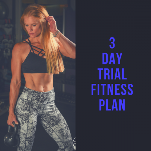 3 day fitness trial plan